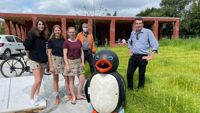 """Jeugdverenigingen adopteren pinguïn- en berenvuilnisbakken, die verdwijnen van speelpleinen: """"We zoeken er een leuke naam voor"""""""