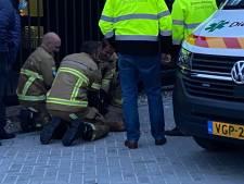 Brandweer bevrijdt ree uit een hek in Hengelo