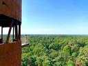 Uitzicht op de bossen.