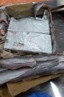 Eis van 9 jaar tegen Gorcumer die wordt verdacht van cocaïnesmokkel in bevroren vis