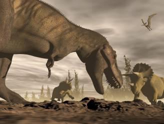Wetenschappers boren naar planetoïde die dinosaurussen fataal werd