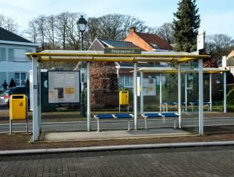 Slechts 5 van 56 bushaltes bereikbaar voor mensen met beperking: Zandhoven engageert zich om charter Masterplan 'Toegankelijke Haltes' te ondertekenen