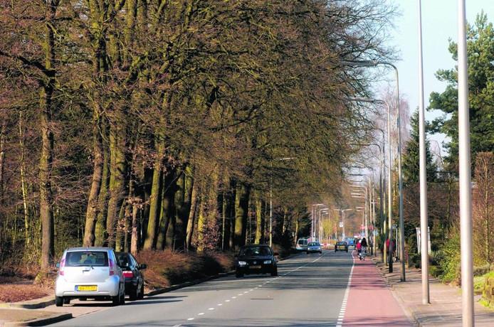 Nijverdal-Oost betreurt het dat de Boomcateweg een toegangsweg tot industrieterrein 't Lochter blijft.