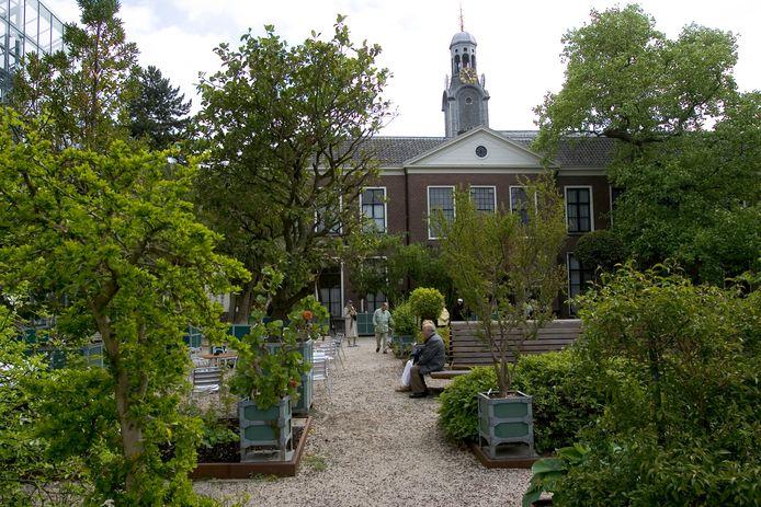 Hortus Botanicus in Leiden