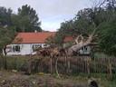 In de straat Noordduinen in Koksijde is een boom op het dak van een woning gewaaid. Er is heel wat schade.