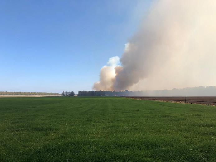 Bosbrand bij Schaarsbergen.