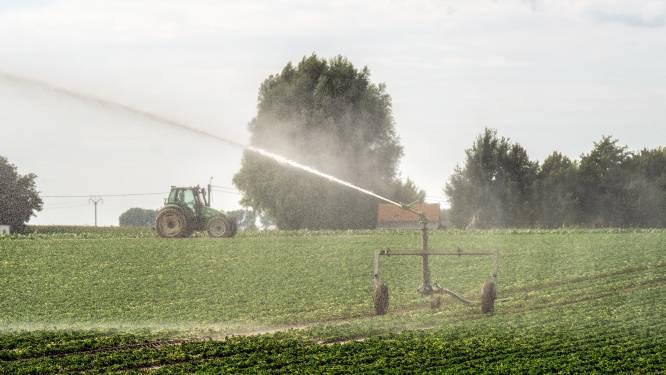 Gemeentebestuur Lint meet droogte en hitte in eigen tuin voor groot onderzoek in Vlaanderen