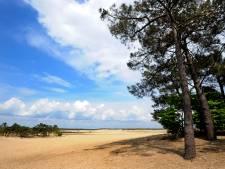 Loon op Zand uitgeroepen tot Wandelgemeente van het jaar: 'Waar je ook kijkt, zand!'