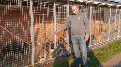 """Hoeve Hoogland: """"Zolang korting op dieren niet verboden is, doen we hiermee verder"""""""
