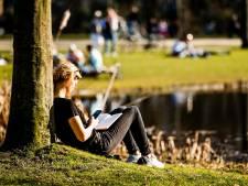 Amsterdamse parken worden steeds drukker