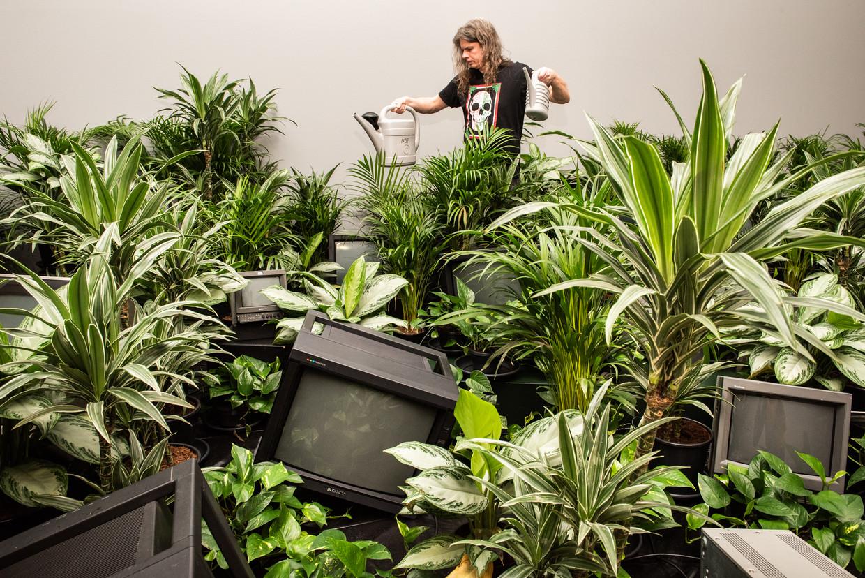 De planten in het Stedelijk Museum in Amsterdam, die onderdeel maken van de installatie van Nam Juna Paik, krijgen twee keer per week water. Beeld null