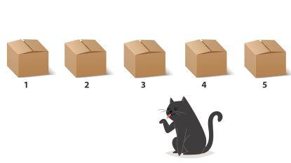 Los jij onze maandagpuzzel op? In welke doos zit de kat?