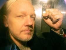 """Assange absent """"physiquement"""" devant le tribunal en appel de son extradition vers les États-Unis"""