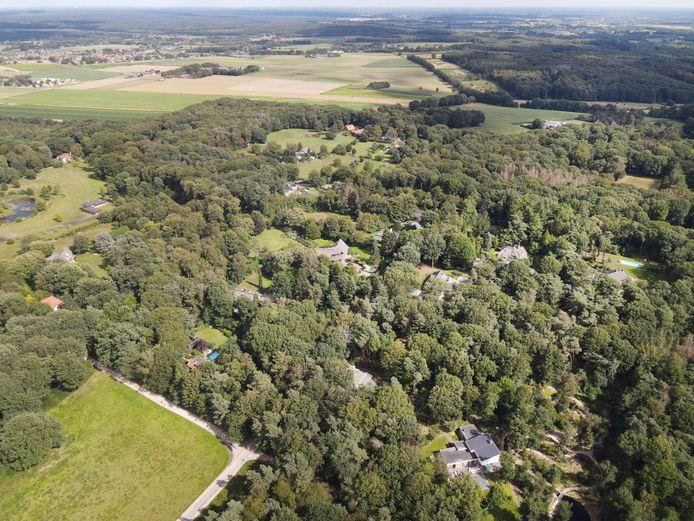 De Bisselt ligt in een bosrijke omgeving.