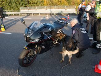 Motorrijder rijdt met hoge snelheid op één wiel, politie neemt motor in beslag