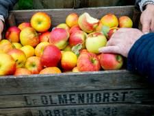 Smaaktest: wat is de lekkerste appelmoes uit een potje?