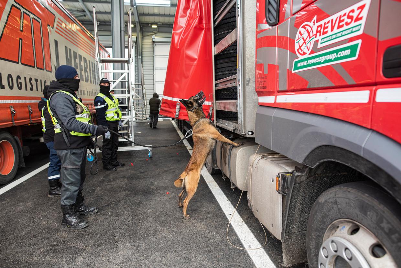 Een hond gespecialiseerd in reuk heeft in de pitstop in Calais een meereizende migrant ontdekt.