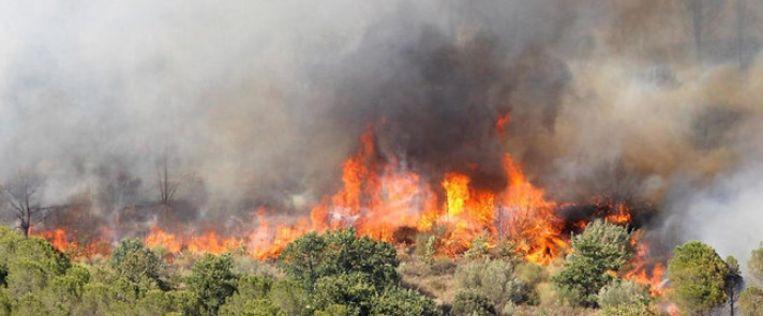 De brand in Argelès-sur-Mer.