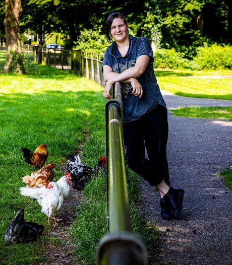 Kip ligt dagenlang gewond in dierenweide: 'Niemand deed iets, het kostte me zestien telefoontjes en 48 uur'