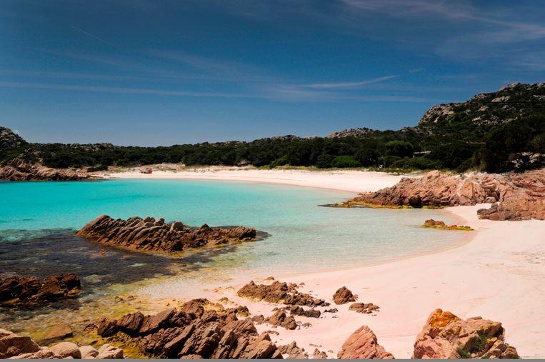 Morandi was opzichter op het eiland Budelli, dat met azuurblauw water en roze zandstranden een enorme aantrekkingskracht uitoefent op toeristen. Beeld Universal Images Group via Getty
