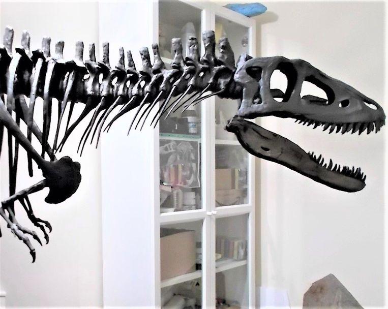 Replica van T. rex Beeld RV