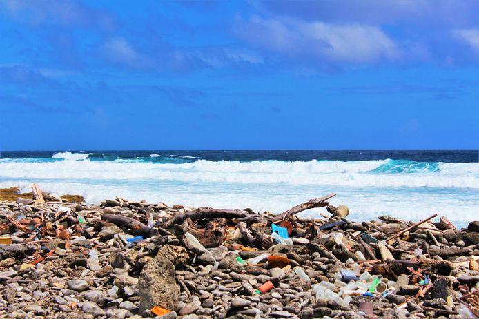 Een van de vervuilde stranden op Bonaire.