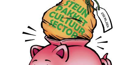 Twentse cultuursector vreest dat gemeenten hún geld ergens anders aan uitgeven: 'Bang dat ze er lantaarnpalen voor kopen'