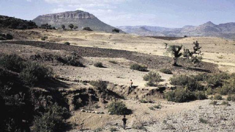 De Amhara-regio in Ethiopië, die (deels) overspoeld kan raken wanneer de Dechatu buiten z?n oevers treedt. (FOTO PETTERIK WIGGERS) Beeld