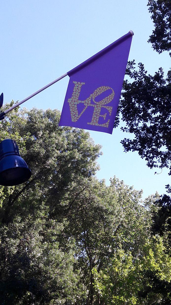 In het Valkenberg hangt aan bijna elke lantaarnpaal een LOVE-vlag