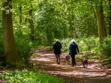 Hondenbelasting Goirle en Gilze en Rijen ter discussie
