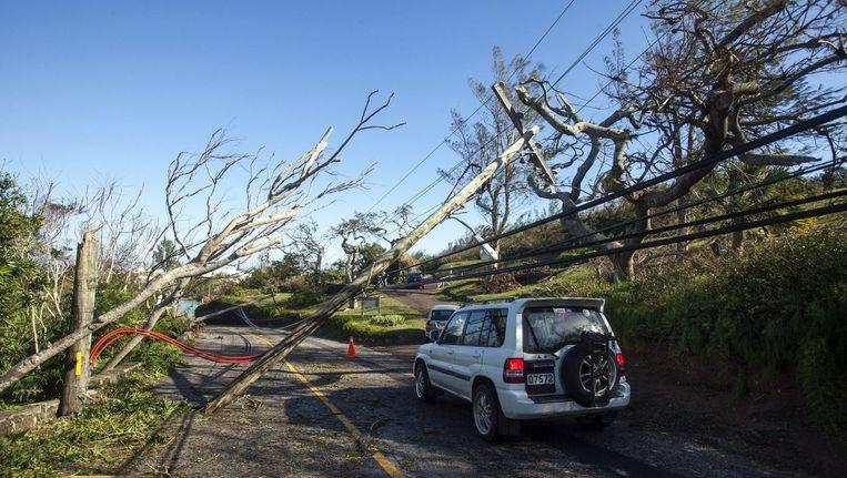Omgewaaide bomen en elektriciteitsmasten in het westen van Bermuda Beeld reuters