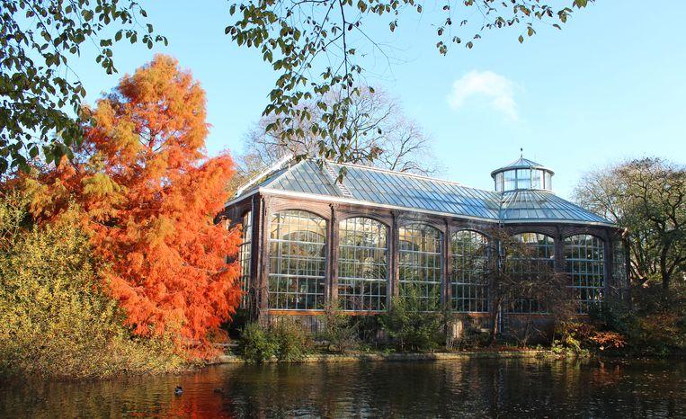 Ga in de Hortus Botanicus op avontuur. Beeld