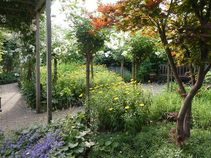 De tuin van Gerdy Kraus uit Maarssen is verkozen tot mooiste tuin van Stichtse Vecht in de categorie kleine tuin.