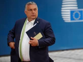 Hongaarse premier Orban plant referendum over beruchte antihomowet