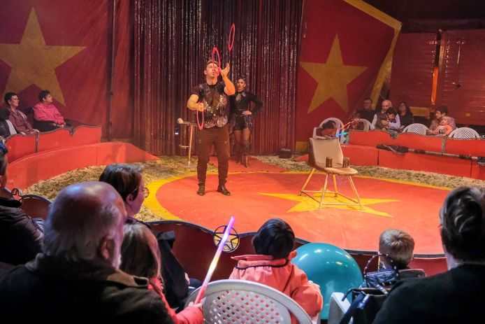 circus in Meise