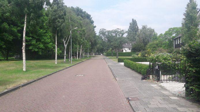 De Coornhertstraat in de Bossche wijk Zuid, nu alleen voor vergunninghouders. Bewoners vrezen vreemdparkeren in de weekeinden door té goedkope tarieven.