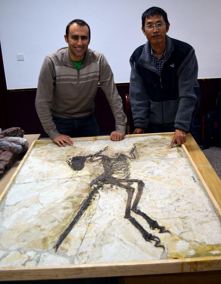 Steve Brusatte en een collega-paleontoloog bij het eerste dinofossiel-met-veren ooit ontdekt, in 1996 in Noord-China.  Beeld BELGAIMAGE