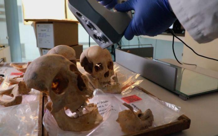 De botten van Christoffel Columbus en zijn familieleden worden onderzocht.