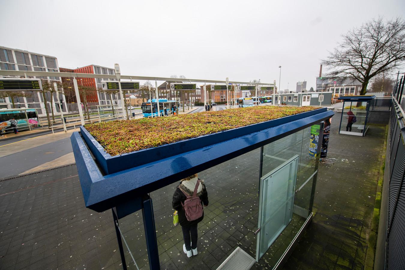 De twee eerste - en voorlopig enige - groene bushokjes van Apeldoorn  staan aan de rand van het busstation.
