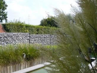 Meer privacy in je tuin? Dat kan met deze 10 snelle oplossingen