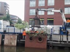 Miljoenensubsidie voor experiment met vergroenen kademuren Nieuwe Mark in Breda
