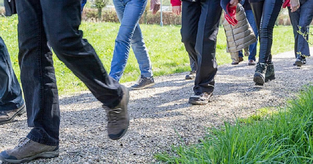 Wandelproject in Wierden en Enter voor bankhangers: 'Belangrijk om te blijven bewegen'