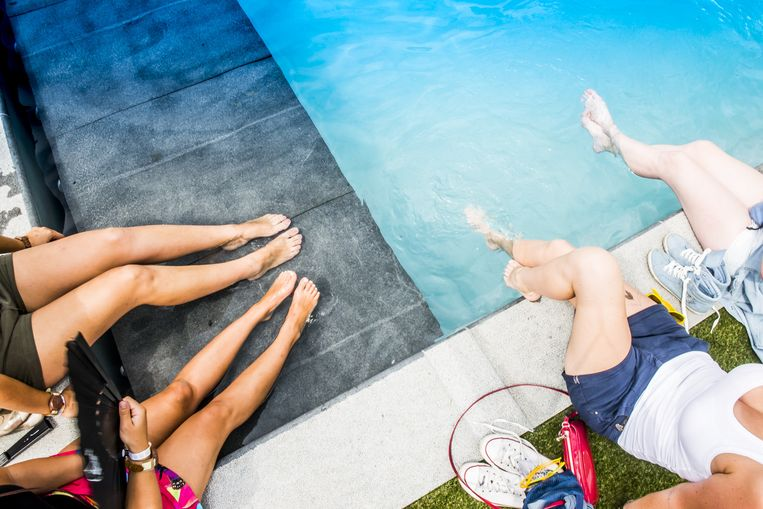 The Garden of Madness, daar kan geen zwembad ontbreken. Beeld Stefaan Temmerman