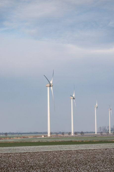 Plannen voor nieuwe of extra windmolens op Tholen voorlopig van de baan