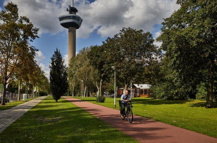 Tegenstanders van bebouwing vrezen dat anders het karakter van dit stukje Rotterdam wordt aangeast