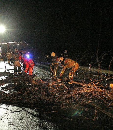 Storm Bella beperkt zich tot omgewaaide bomen en verwaaide takken in de regio