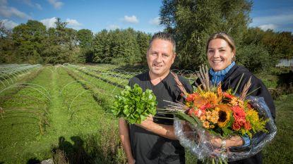 Waterkers uit Haspengouw is hét Limburgse streekproduct