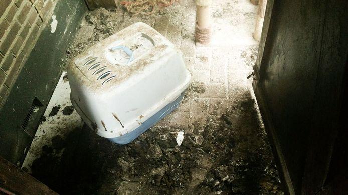 De politie trof in de woning meerdere verwaarloosde dieren aan.