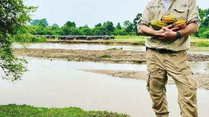 Dominique Persoone maakt eerste chocoladerepen uit Congo