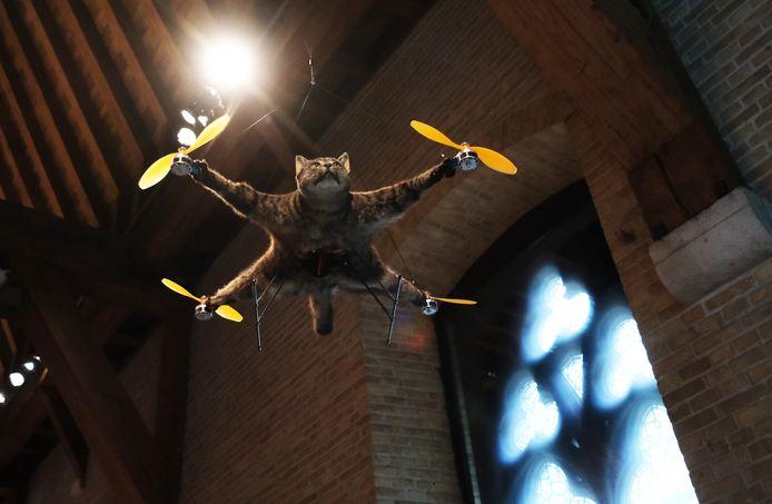 De poes Orville werd aangereden door een auto en stierf. De kater was genoemd naar de bekende Amerikaanse piloot Orville Wright. Kunstenaar Bart Jansen koos ervoor om niet helemaal afscheid te nemen van zijn kat en liet ze opzetten en bouwde ze om tot de Orvillecopter.